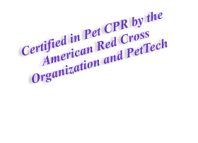 Certified in Pet CPR by the American Red Cross Organization and PetTech